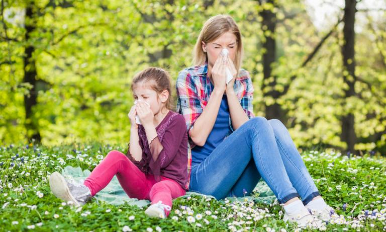 common allergies
